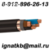 Закупаю неликвиды кабеля/провода ПВ1,ПВ3, ПНСВ, ПАЛ, РКГМ, ВВГ,ВБШВ,КВВГ,НРГ и другой с консервации, невостребованный. Дорого.